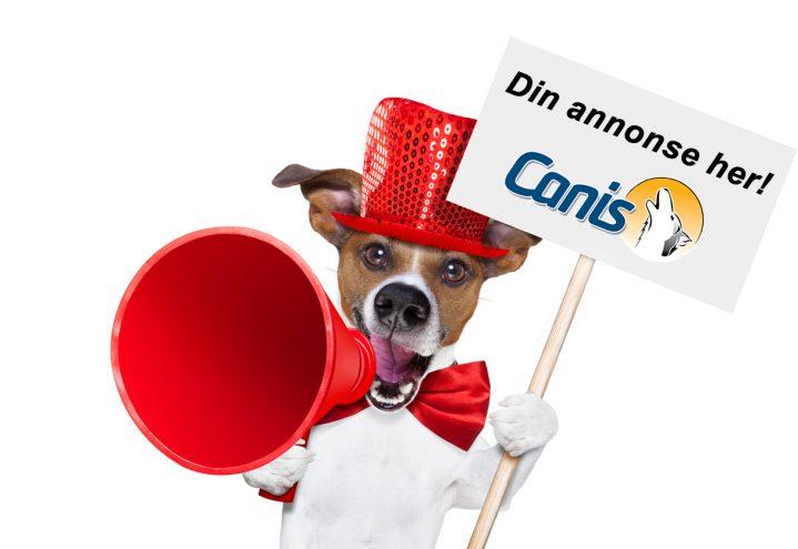 Målrettet annonsering mot seriøse hundeeiere!