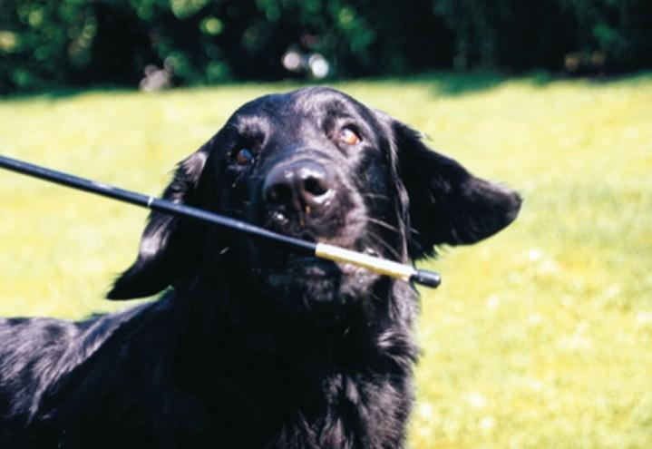 Leksjon 3: Innlæring av target stick